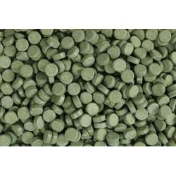 Glopex Algentaltablets ze spiruliną 40% - uzupełnienie 50g