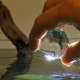 Evolution Aqua Pure BOMB bakterie na start