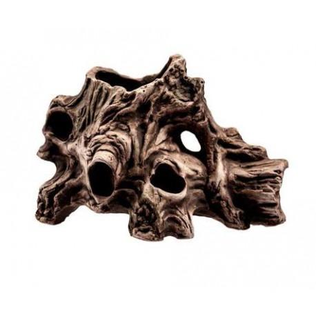 Korzeń Dziurawy średni - 18 x 12 x 10 cm (28018)