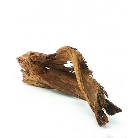 Korzeń Mangrowca 50-77cm - 1szt