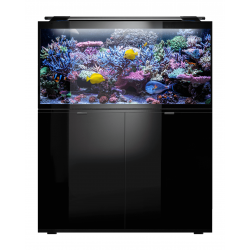 Aquael zestaw Glossy MARINE 100 czarny - 250L