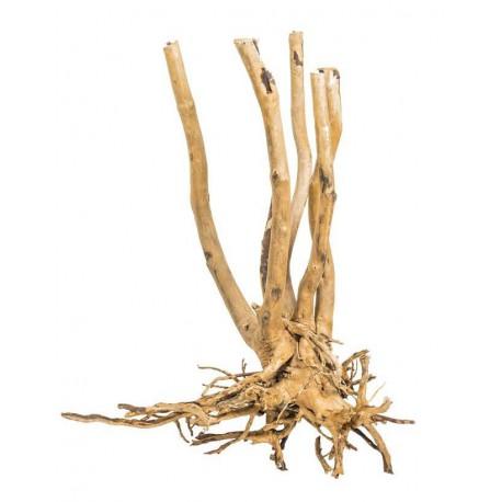 Korzeń Fine Wood Stump - 1kg