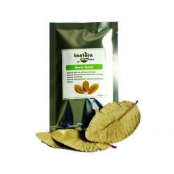 Tantora Guava Leaves liście Guawy - 10szt